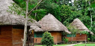 Sani Jungle Lodge