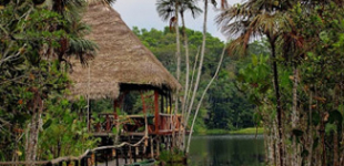 Siona Jungle Lodge