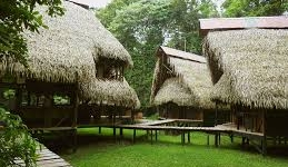 Jamu Jungle Eco Lodge