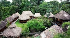 Samona Jungle Lodge
