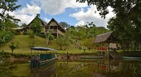 Yarina Jungle Eco Lodge
