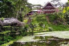 Suchi Pakari Jungle Lodge