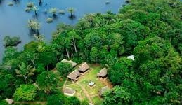 Cuyabeno Jungle Lodge