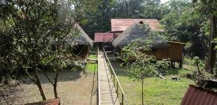Cuyabeno Dolphin Jungle Lodge